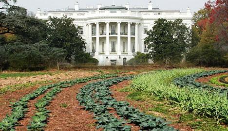 white-house-organic-garden-lawn-photo
