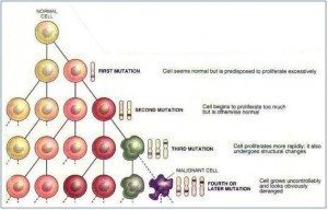 Mutating cells can lead to cancer