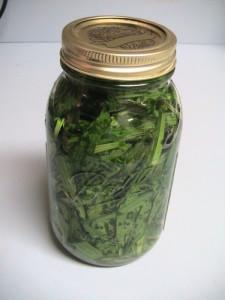 herb-tincture