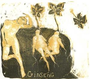 ginseng-1