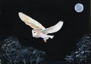 painting night owl 2008(1)_35980
