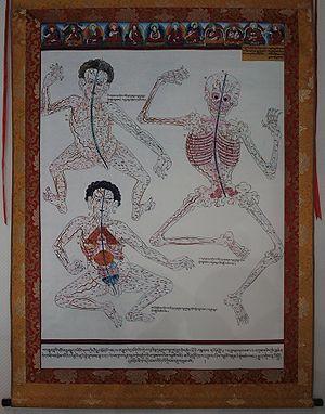 300px-Ancient_Tibetan_Medicine_Poster