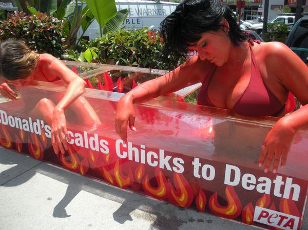 PETA likes to use shock and controversy, mixed with irreverence, to get their message across