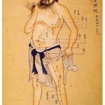 A Look at Traditional Chinese Medicine, Part 1